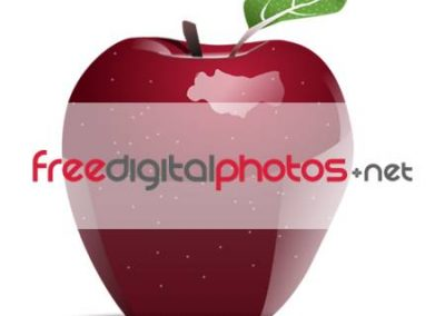 Free Digital Photos